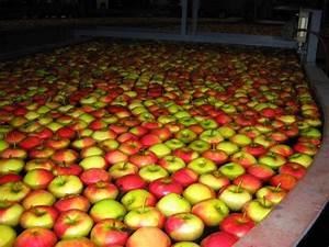 Conservation Des Poires : m thode de conservation de la pomme la pomme ~ Melissatoandfro.com Idées de Décoration