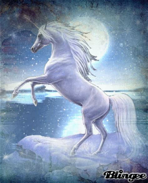 unicorn care  magical creatures picture