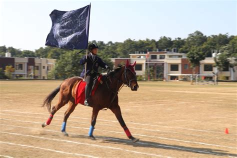 horse riding boarding doon dehradun riverside