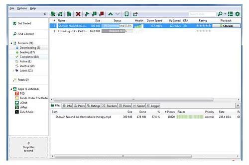 baixar torrent para windows pc 8.1 64 bits