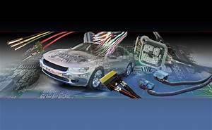 Car Wire Harness  U2013 Wire Harness Manufacturers  Custom