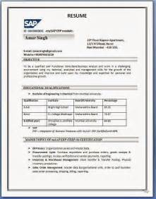 resume format in word india sap sd resume format
