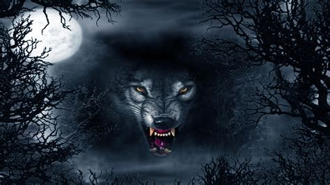 Angry Lone Wolf Wallpaper by Evil Wolf Wallpapers Top Free Evil Wolf Backgrounds