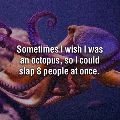 Octopus Meme - weekend aquarium meme roundup aquanerd