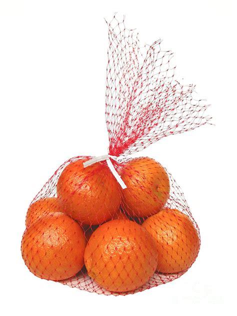 bag  oranges photograph  ann horn
