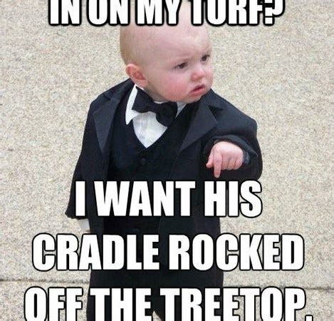 Mafia Baby Meme - 147 best images about too funny on pinterest drunk baby funny baby pictures and babies