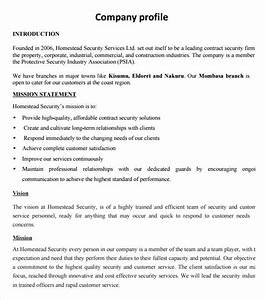 sample company profile sample 7 free documents in pdf word With security company profile template