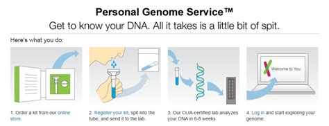 andme dna test review