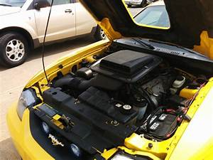 2004 Ford Mustang Mach 1 For Sale | Clark Automotive