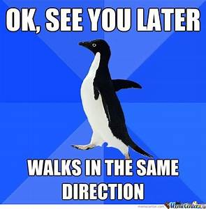 awkward penguin meme center picture MEMES