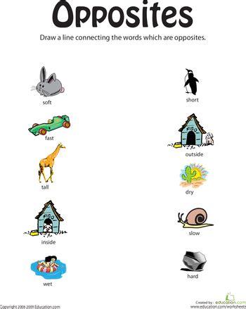 teaching opposites education com