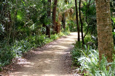 garden state park washington oaks gardens state park palm coast florida