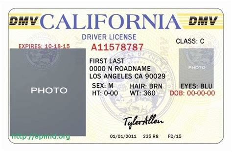 blank drivers license template     images