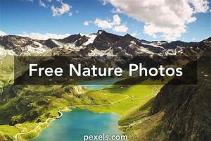 Nature images · Pexels · Free Stock Photos