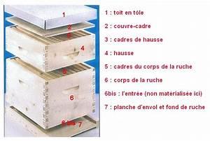 Comment Faire Une Ruche : le monde des abeilles une ruche chez soi ~ Melissatoandfro.com Idées de Décoration