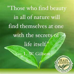 nature quotes - Google Search | Nature Quotes | Pinterest ...