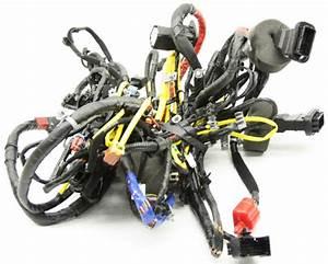 Oem Kia Rio Sedan Body Wire Harness 91515