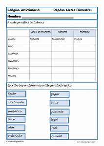 Ejercicios De Lengua Tercero De Primaria