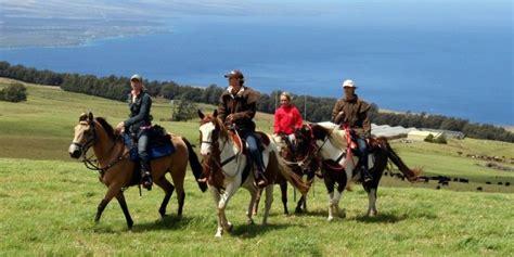 hawaii riding island wttw horseback ranch schedule
