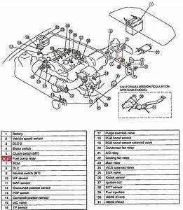1994 Mazda Protege Fuel Pump  1994  Free Engine Image For