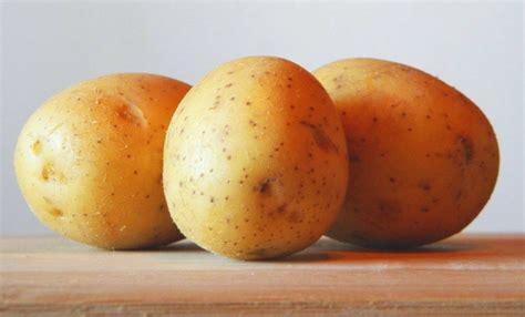 was hilft gegen rost kartoffeln gegen rost rostflecken