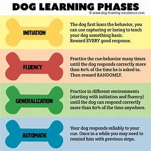 reliable dog training command step by step guide With dog training commands