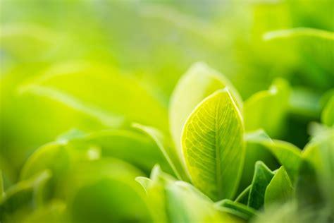 ocme environmental sustainability