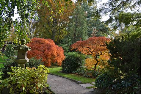 Japanischer Garten Im Herbst by Japanischer Garten Stadt Leverkusen