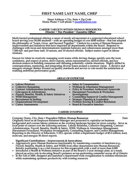 director or vice president or executive officer resume