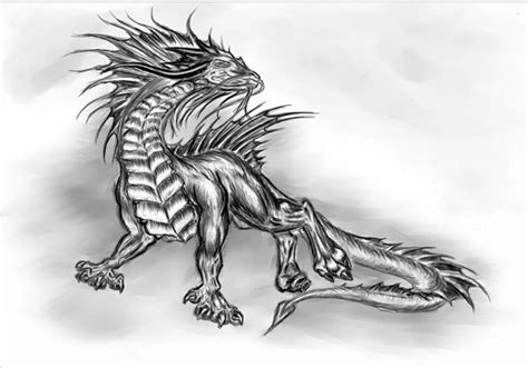 15 Best Pencil Drawings Of Dragon Images On Pinterest