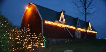 best christmas tree farms in aurora illinois chicagoland illinois tree farms choose and cut trees tree lots with pre