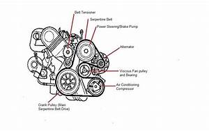 Engine Viscous Clutch Belt Diagram