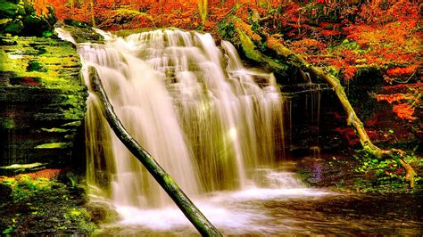 autumn forest waterfall nature aiyumn hd background