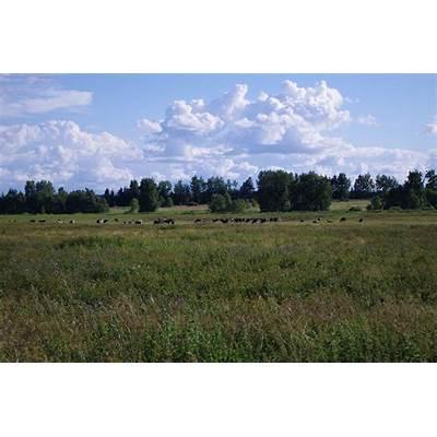 Tartu County - Wikipedia