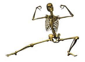 ... Guaranteed Ways to Build Strong Bones and Lower Your Osteoporosis Risk  Osteoporosis Bone Health
