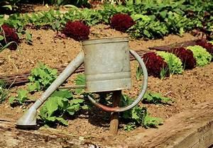 Gemüsegarten Anlegen Für Anfänger : hochbeet bepflanzen vorgehensweise garten mix ~ Whattoseeinmadrid.com Haus und Dekorationen