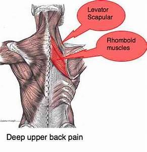 Chiropractic Help Blog