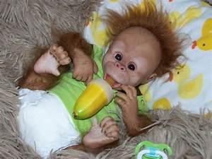 REBORN MONKEY CHIMP BABY Boy ORANGUTAN OOAK ART DOLL~TOO ...