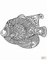 Zentangle Coloring Angelfish Printable Mandala Adult Paw Fish Animal Adults Svg Colouring Patterns Horse Drawing Result Games Categories Discover sketch template