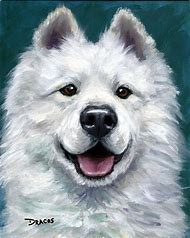 Samoyed Art
