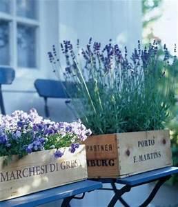 Lavendel Pflanzen Balkon : lavendel in weinkisten pflanzen bild 5 living at home ~ Lizthompson.info Haus und Dekorationen