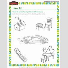 Hear It! Worksheet  Human Body Science For Kindergarten Sod