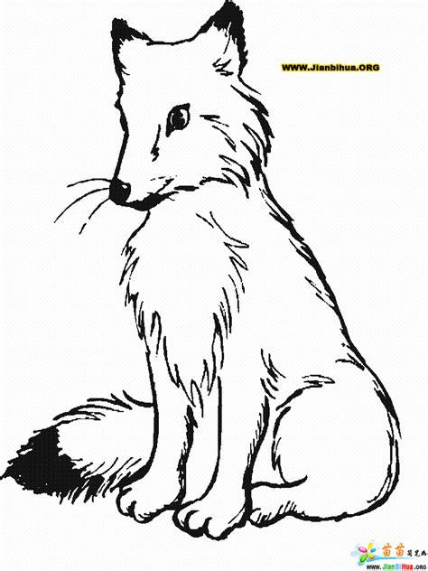 Kleurplaat Roofdieren by 狐狸简笔画图片 第2张