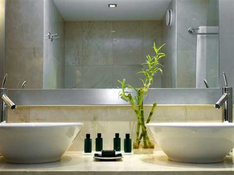 plants for the bathroom feng shui how to feng shui your bathroom boldsky