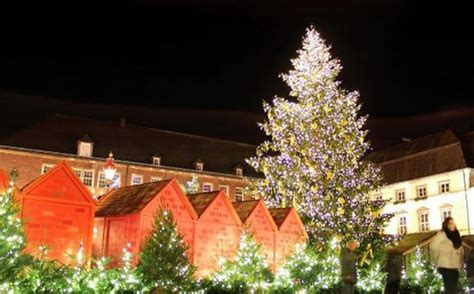 why we put up trees at christmas time