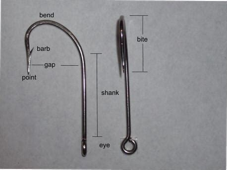 fishing hooks  generally sized   number