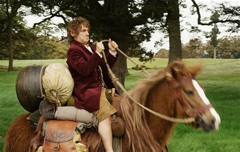 hobbit movies animals horses trilogy brigitte yorke they campaigners blast producers filming die wife during were outlining concerns wrote manager