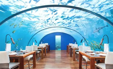 world s first underwater hotel opens in the maldives archpaper com