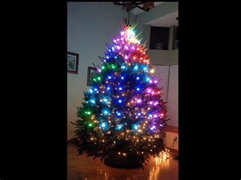 xmas tree lites and bulb tester tree light show spectacle