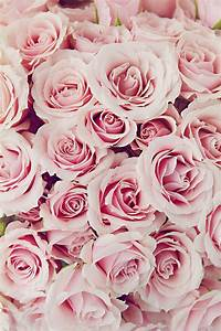Items similar to Ballet Shoes, Pink Roses, Flower